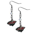 Minnesota Wild® Crystal Dangle Earrings